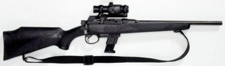 ArmalonPC carbine with polymer stock and optical sights.