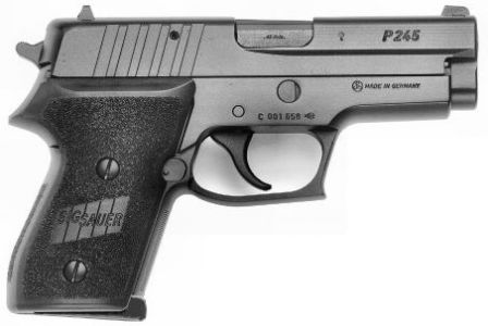 SIG-Sauer P245 pistol (Germany)