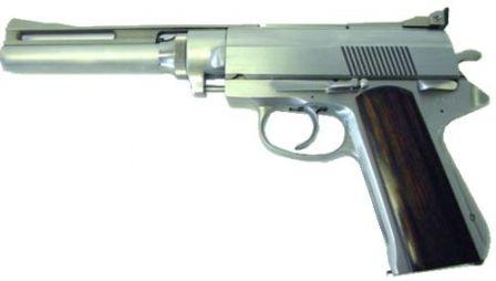8 ile bir başka Wildey tabanca