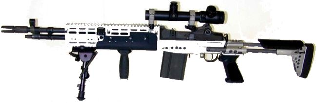 US Navy's Mk.14 Mod.0 Enchanced Battle rifle, a heavily modified M14 automatic rifle.