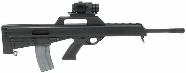 Bushmaster M-17s rifle, right side view, with installed Red Dot sight.