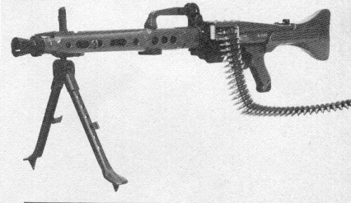 Modern Firearms - CETME AMELI