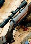 bolt action rifle topped with powerful scope for long-range shots