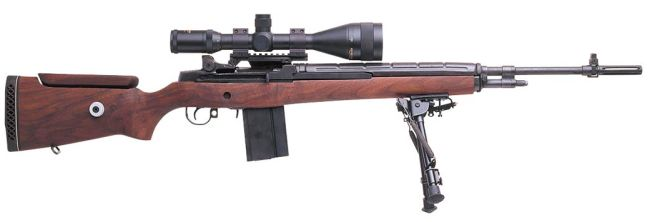 Weapons of Charlotte M21_m1a