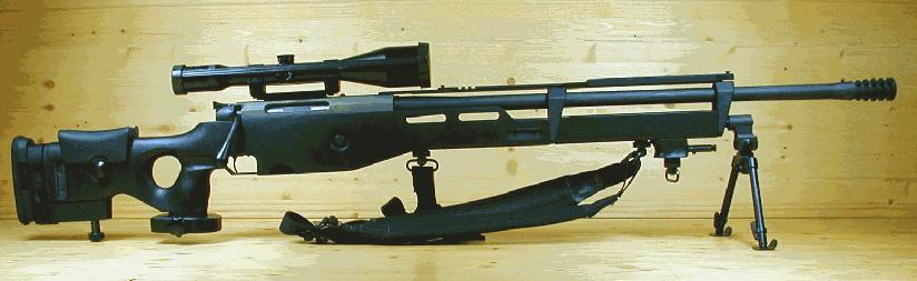 एसआर -100 एक विस्तारित फ़ॉरेन्ड और कारतूस के नीचे एक लंबी बैरल के साथ .338 लापुआ या .300 wm।