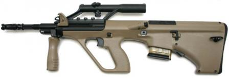 Microtec MSARSTG-556 rifle with 16 inch barrel and integral optical sight (standard configuration), with 10-round magazine.