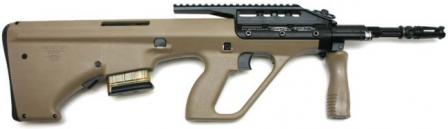Microtec MSARSTG-556 rifle with 16 inch barrel and Picatinny rail receiver, with 10-round magazine.