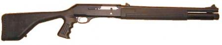 Beretta 1201FP (Police version) with factory pistol grip stock and rifle-type sights.