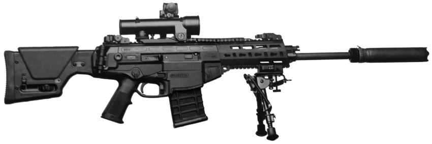 Beretta ARX-200 DMR (Designated marksman rifle, semi-automatic)